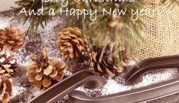 Wij wensen u fijne feestdagen en een voorspoedig 2020!